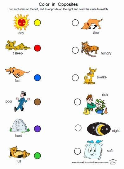 Opposite Worksheets for Preschoolers Unique Prek K Opposites Worksheets