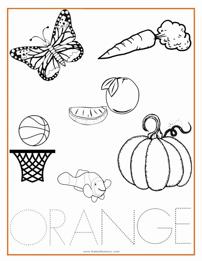 Orange Worksheets for Preschoolers Beautiful 12 orange Worksheet for Preschool Preschool