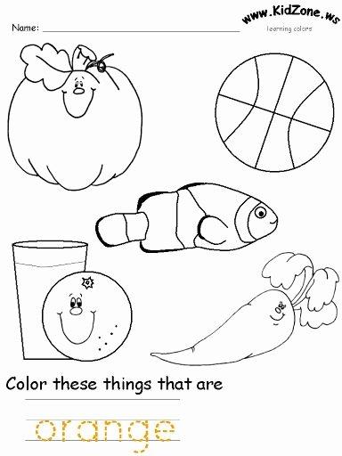 Orange Worksheets for Preschoolers Best Of orange Color Worksheet