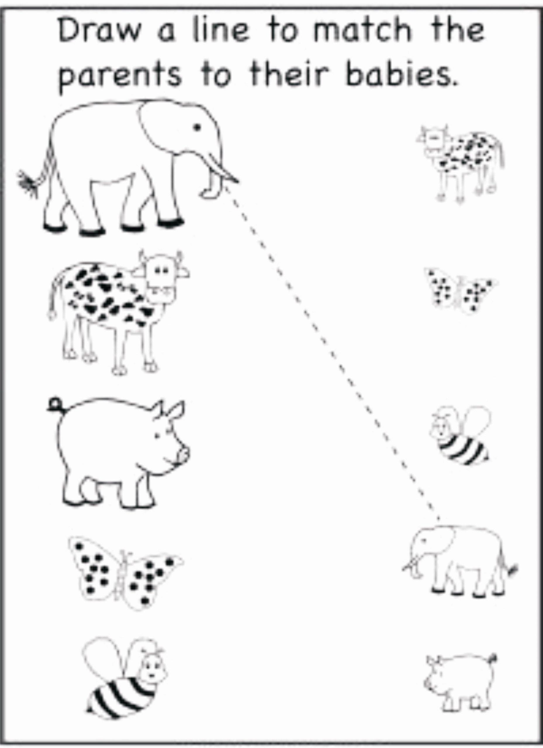 Pairing Worksheets for Preschoolers Awesome Matching Pairs Worksheets Preschool