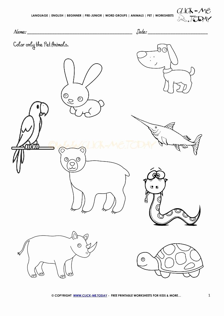 Pet Animals Worksheets for Preschoolers Beautiful Image Result for Pet Farm and Wild Animals Worksheet