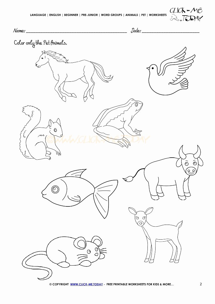 Pet Animals Worksheets for Preschoolers Beautiful Pet Animals Worksheet Activity Sheet 2