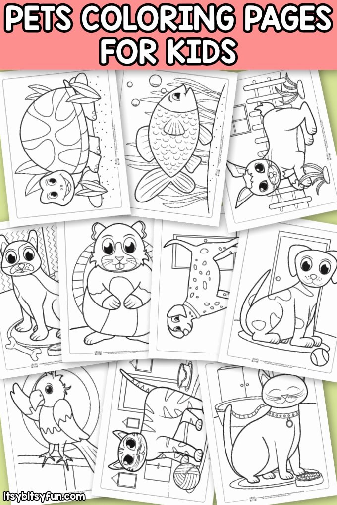 Pet Animals Worksheets for Preschoolers Beautiful Pets Coloring Pages for Kids Itsybitsyfun