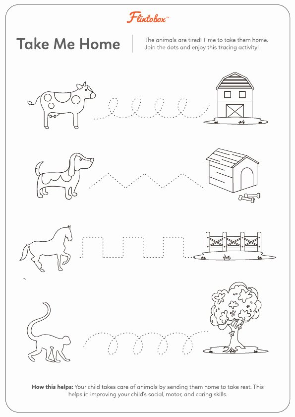 Pet Animals Worksheets for Preschoolers Inspirational 9 Fantastic Ways to Introduce Your Child to Animals
