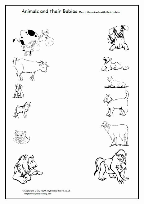 Pet Animals Worksheets for Preschoolers top Free Animals and their Babies Children Match the Animals
