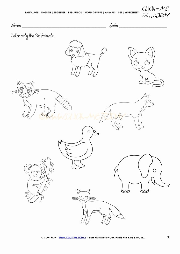 Pet Animals Worksheets for Preschoolers Unique Pet Animals Worksheet Activity Sheet 3