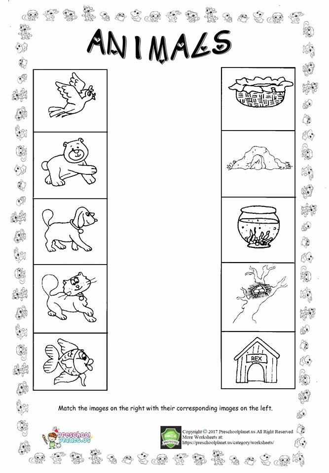 Pet Worksheets for Preschoolers New Animal Worksheet for Kids