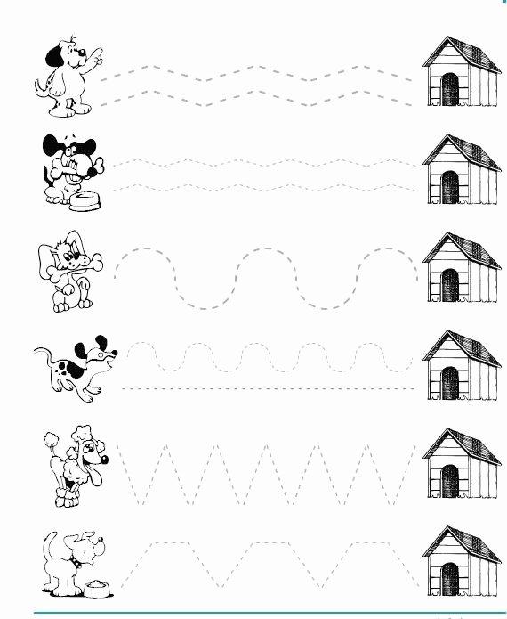 Pet Worksheets for Preschoolers New Dog Trace Worksheet