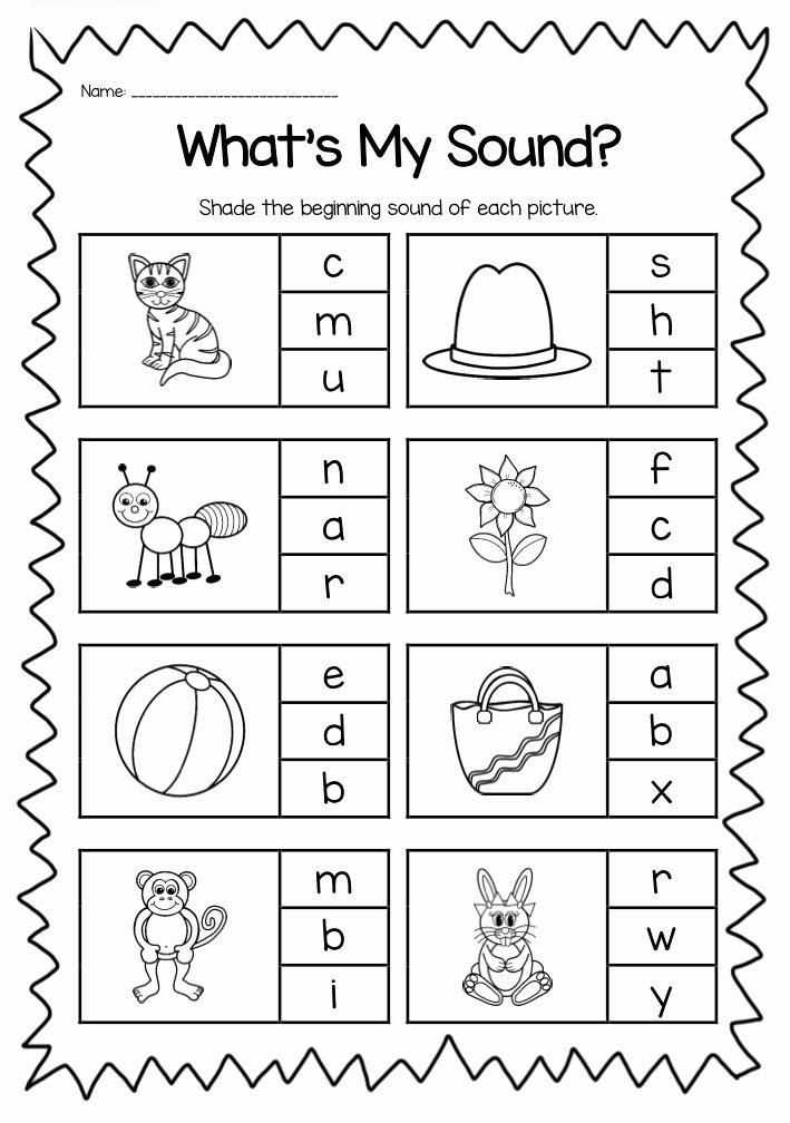 Phonics Worksheets for Preschoolers New Beginning sounds Printable Worksheet Pack Kindergarten