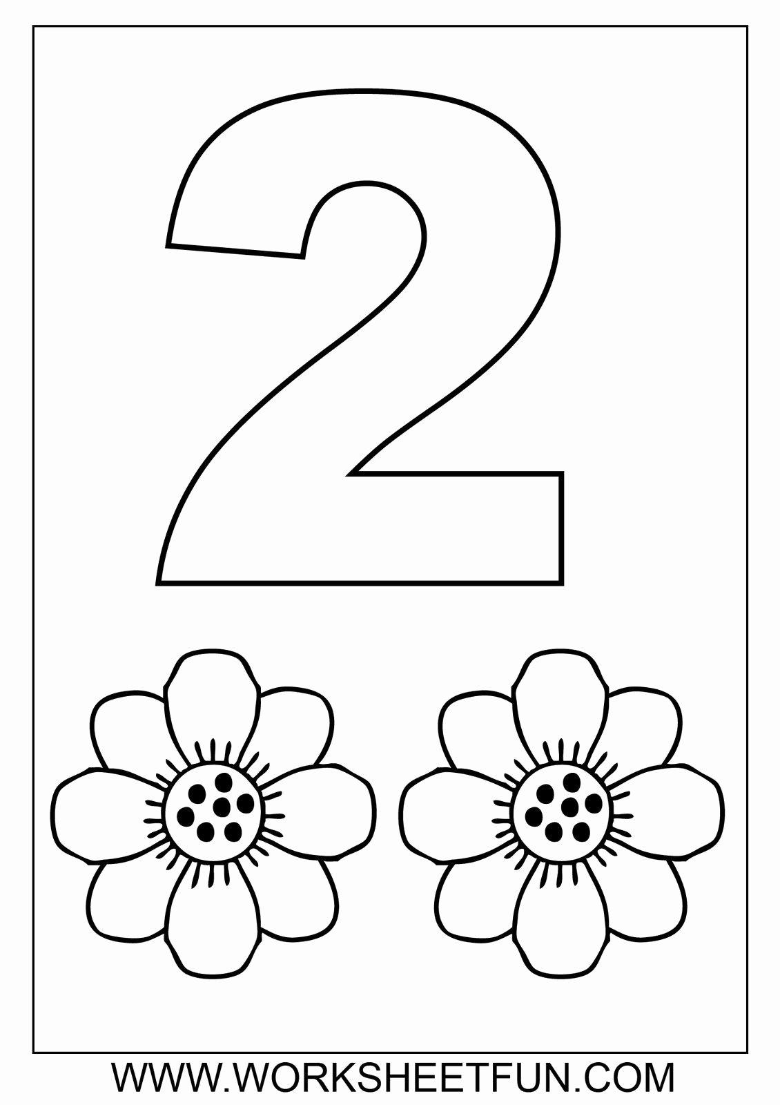 Plant Worksheets for Preschoolers Inspirational Number 7 Worksheets for Preschoolers 2 Plant Worksheet for