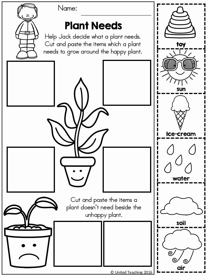 Plant Worksheets for Preschoolers New Jack and the Beanstalk Fairy Tale Activities Distance