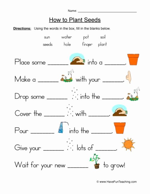 Plant Worksheets for Preschoolers Unique Plants Worksheets • Have Fun Teaching