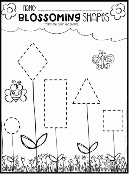Plants Worksheets for Preschoolers top 57 Ideas Plants Flowers with Preschoolers