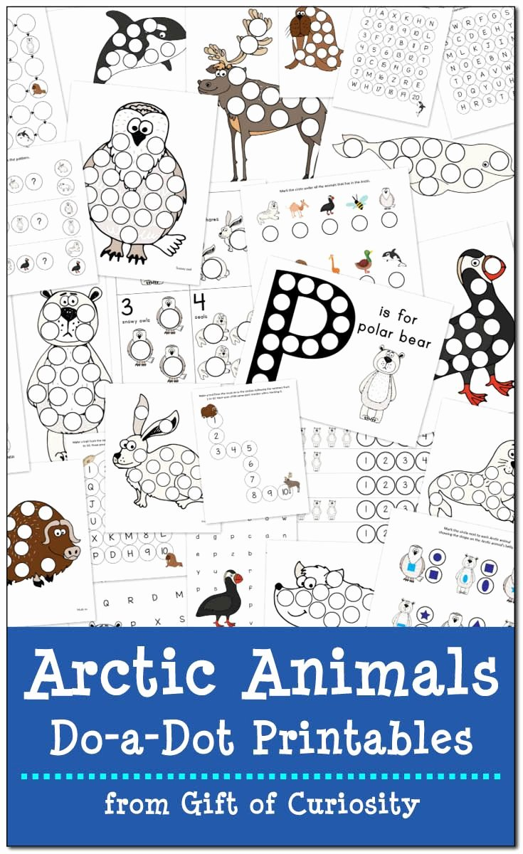 Polar Animal Worksheets for Preschoolers Fresh Arctic Animals Do A Dot Printables Free