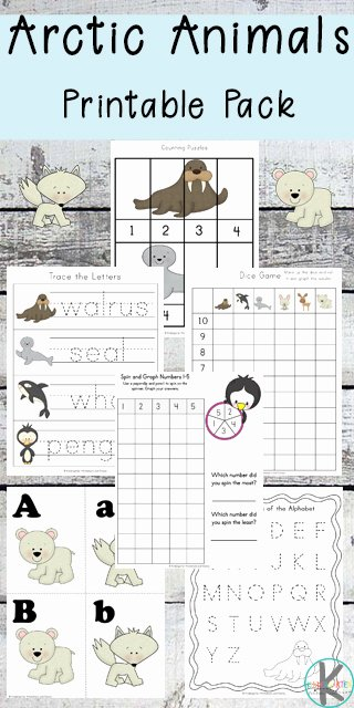Polar Animal Worksheets for Preschoolers Fresh Free Arctic Animals Worksheets
