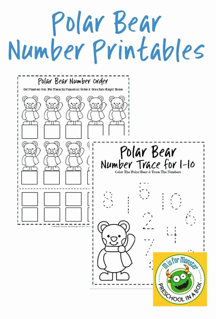 Polar Animal Worksheets for Preschoolers Fresh Page Not Found