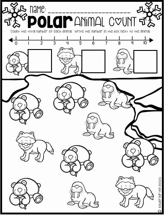Polar Animal Worksheets for Preschoolers Fresh Polar Animal Math and Literacy Worksheets and Printables for