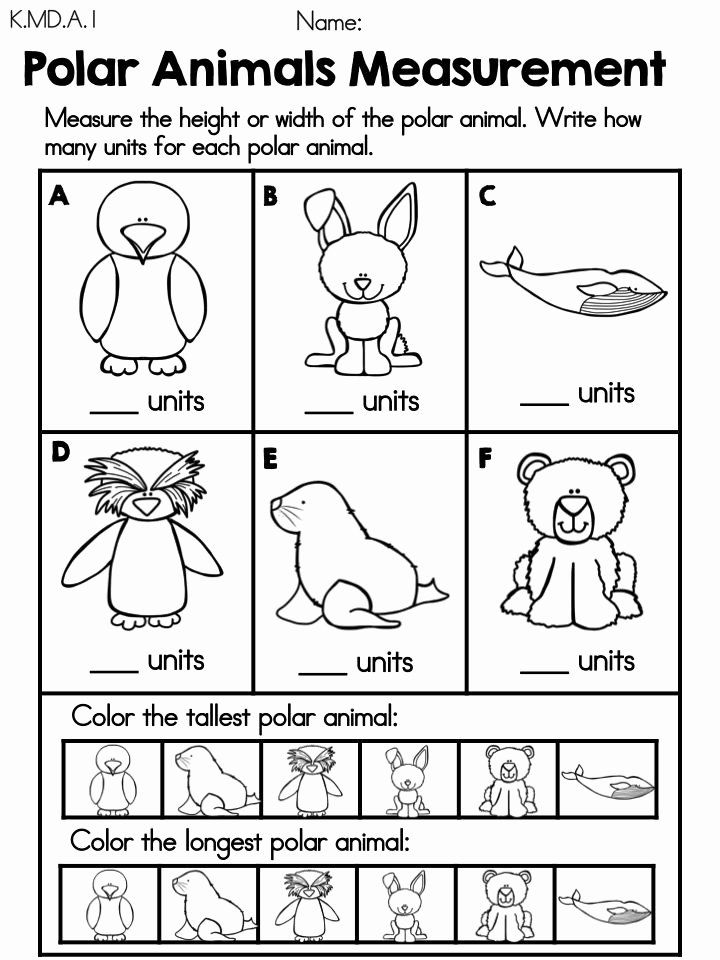 Polar Animal Worksheets for Preschoolers Inspirational Measurement Polar Animals Free Math Center