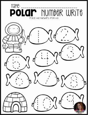 Polar Animal Worksheets for Preschoolers Lovely 100 Best Arctic Animals Preschool Images In 2020