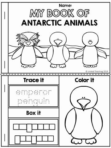 Polar Animal Worksheets for Preschoolers New Arctic Animals No Prep Activities