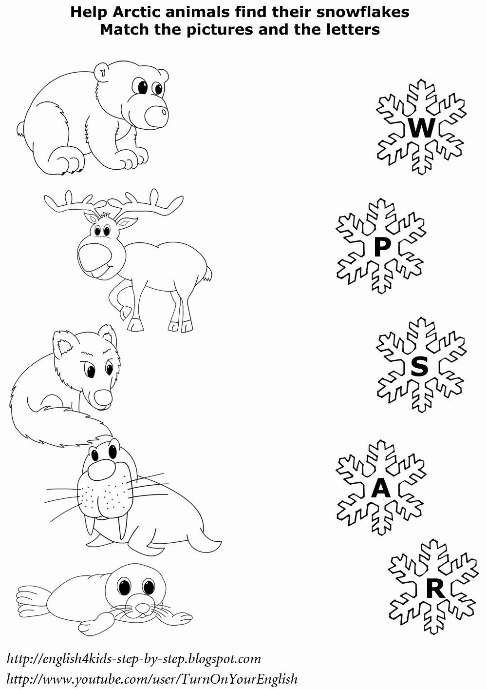 Polar Animal Worksheets for Preschoolers New Arctic Animals song for Children