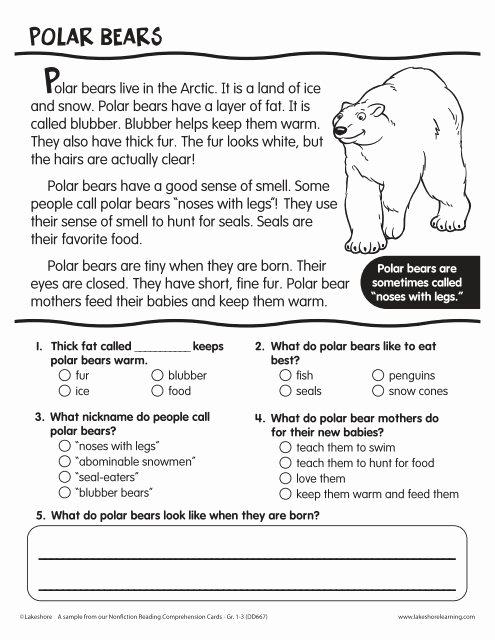 Polar Bear Worksheets for Preschoolers Fresh Polar Bears Reading Prehension Passage Lakeshore Bear