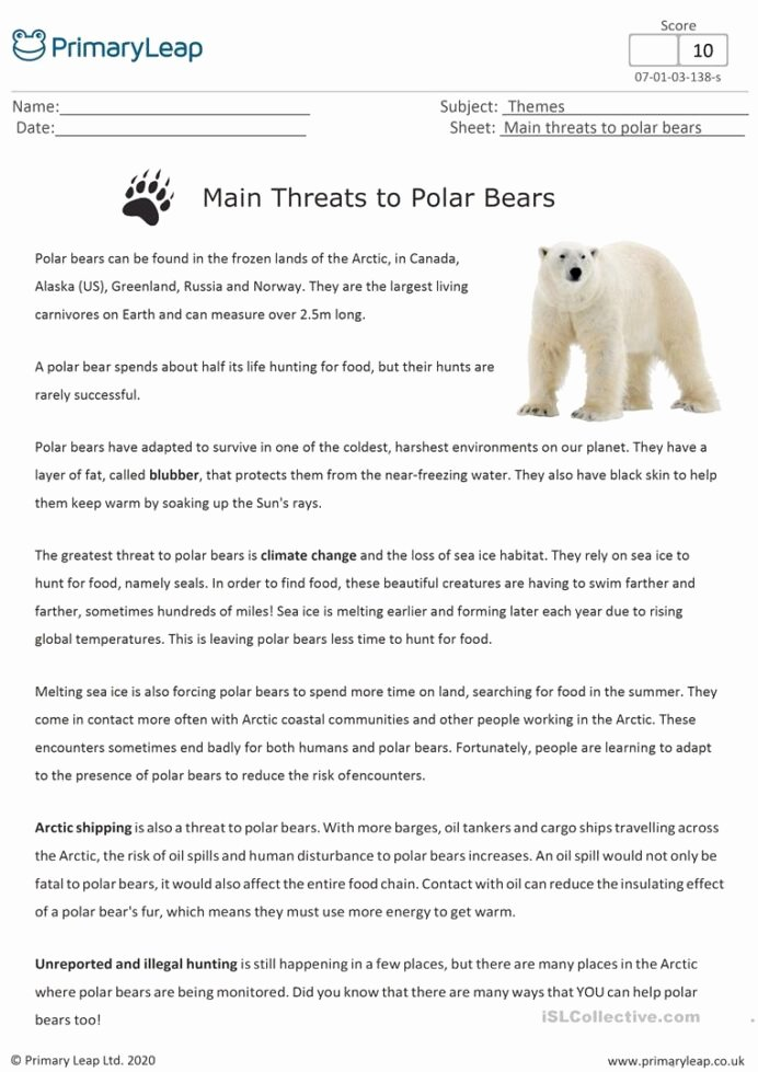 Polar Bear Worksheets for Preschoolers New Reading Prehension Main Threats to Polar Bears English