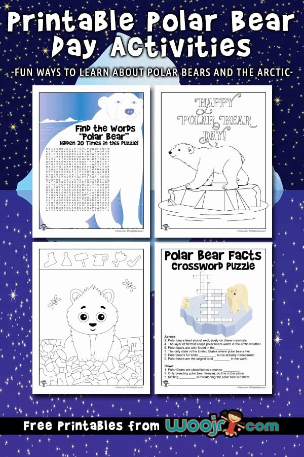Polar Bear Worksheets for Preschoolers top Polar Bear Day Activities for Kids