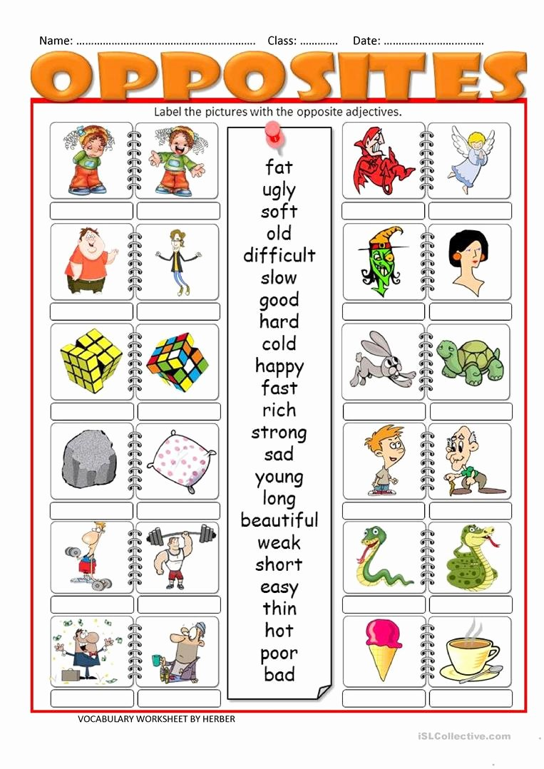 Printable Opposite Worksheets for Preschoolers Fresh Opposites Lessons Tes Teach