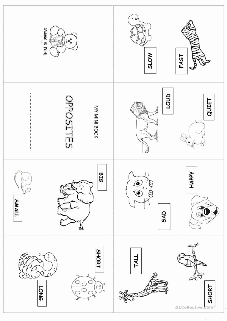 Printable Opposite Worksheets for Preschoolers Inspirational 20 Opposites Worksheet for Kindergarten