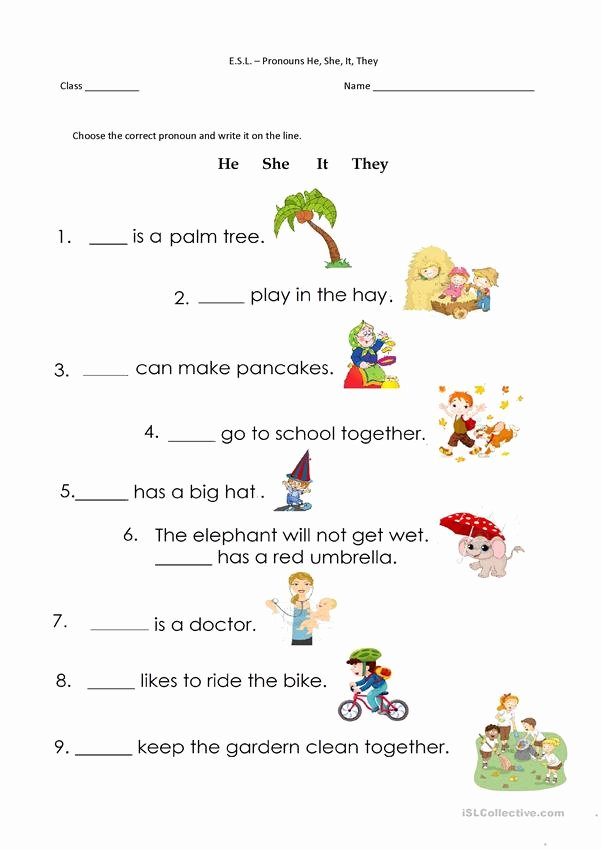 Pronoun Worksheets for Preschoolers Best Of Pronouns He She It they English Esl Worksheets for