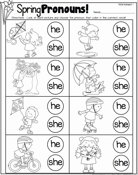 Pronoun Worksheets for Preschoolers Inspirational Spring Pronouns with Images