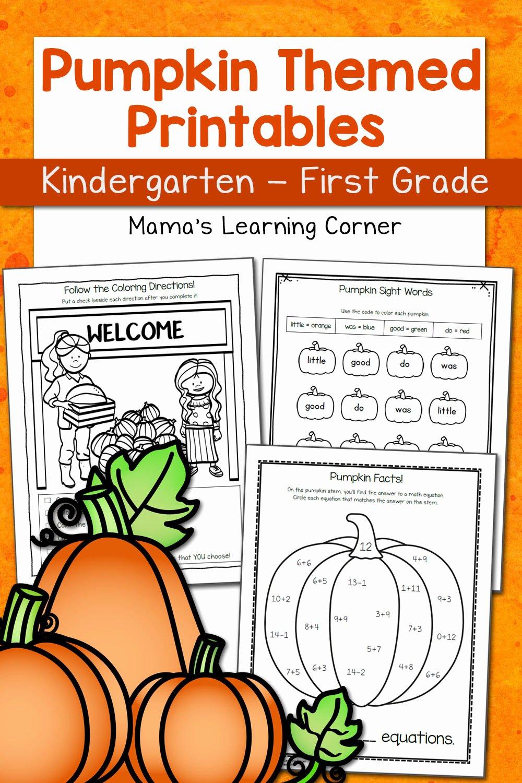 Pumpkin Math Worksheets for Preschoolers Lovely Pumpkin Worksheets for Kindergarten and First Grade Mamas