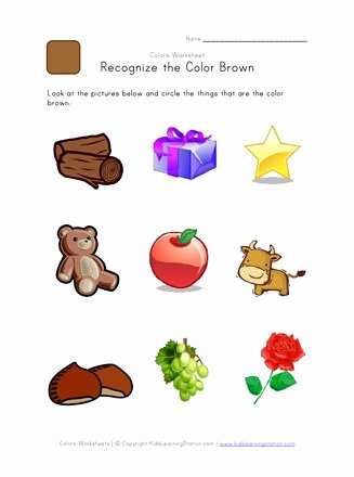 Recognizing Colors Worksheets for Preschoolers Beautiful Recognize the Color Brown Colors Worksheet for Kids