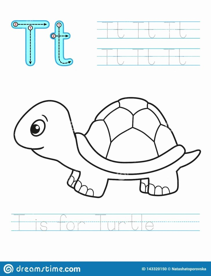 Reptile Worksheets for Preschoolers Beautiful Worksheet Depositphotos Stock Illustration