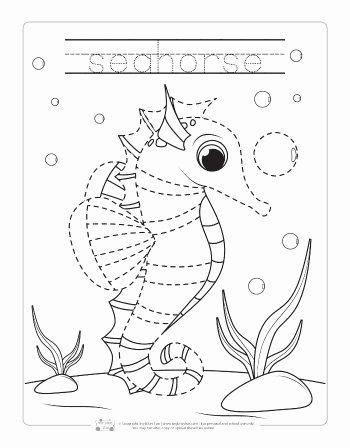 Sea Animals Worksheets for Preschoolers New Ocean Animals Tracing Worksheets Itsybitsyfun