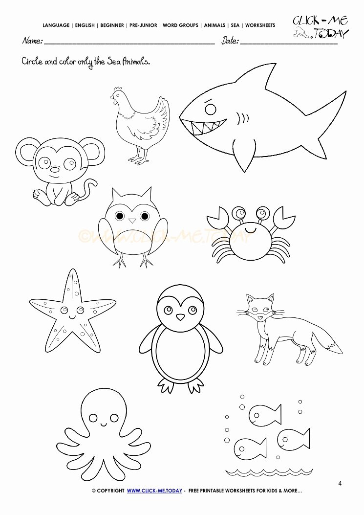 Sea Animals Worksheets For Preschoolers New Sea Animals Worksheet Activity  Sheet Circle 4 – Printable Worksheets For Kids