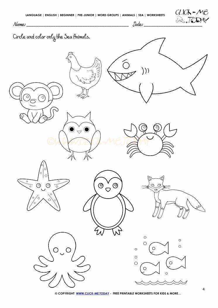 sea animals worksheets 4