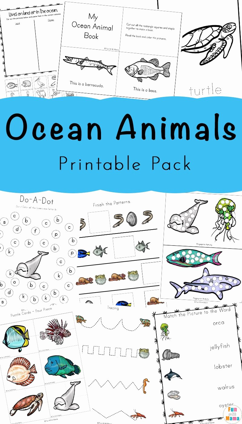 Sea Creatures Worksheets for Preschoolers Lovely A Super Fun Ocean Animals Printable Pack for Kids