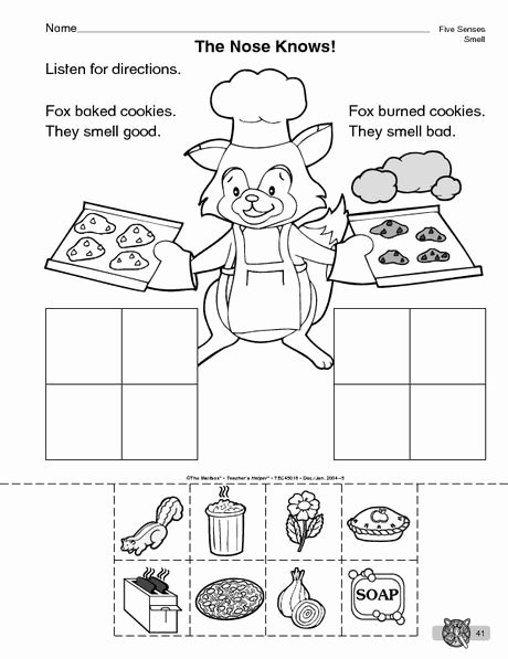 Sense Of Smell Worksheets for Preschoolers Best Of the Mailbox