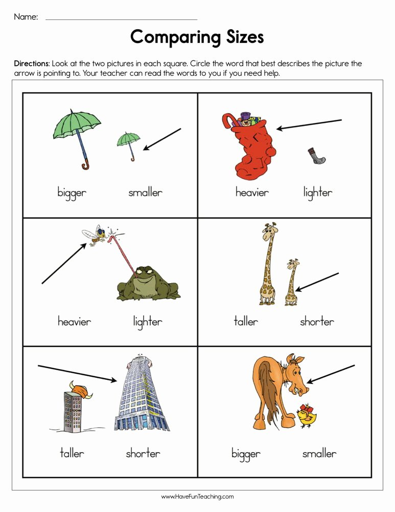 Size Comparison Worksheets for Preschoolers Lovely Paring Sizes Worksheet