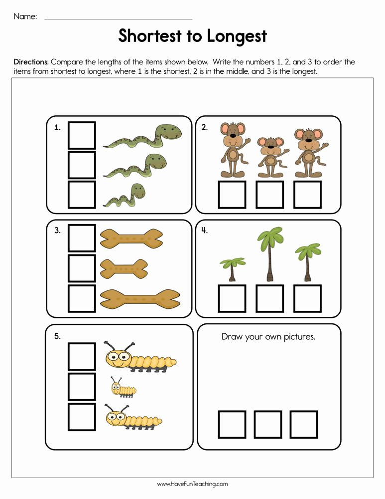 Size Comparison Worksheets for Preschoolers Lovely Shortest to Longest Worksheet