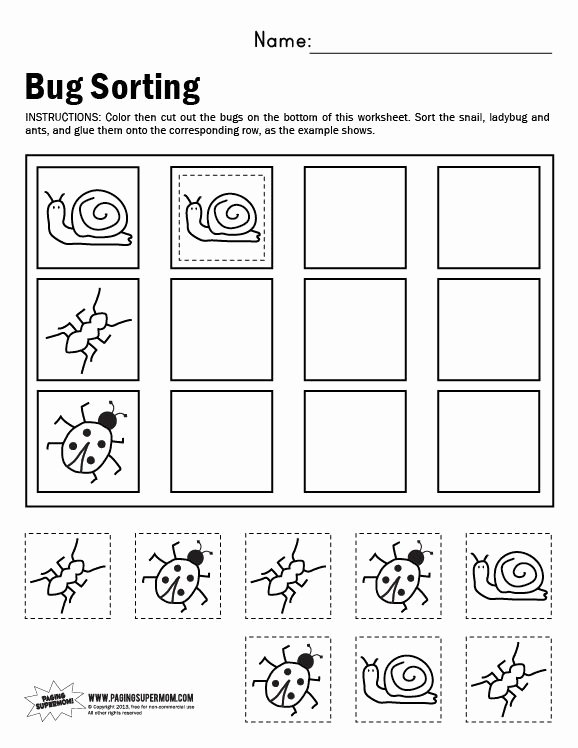 Sorting Worksheets for Preschoolers Lovely Bug sorting Worksheet