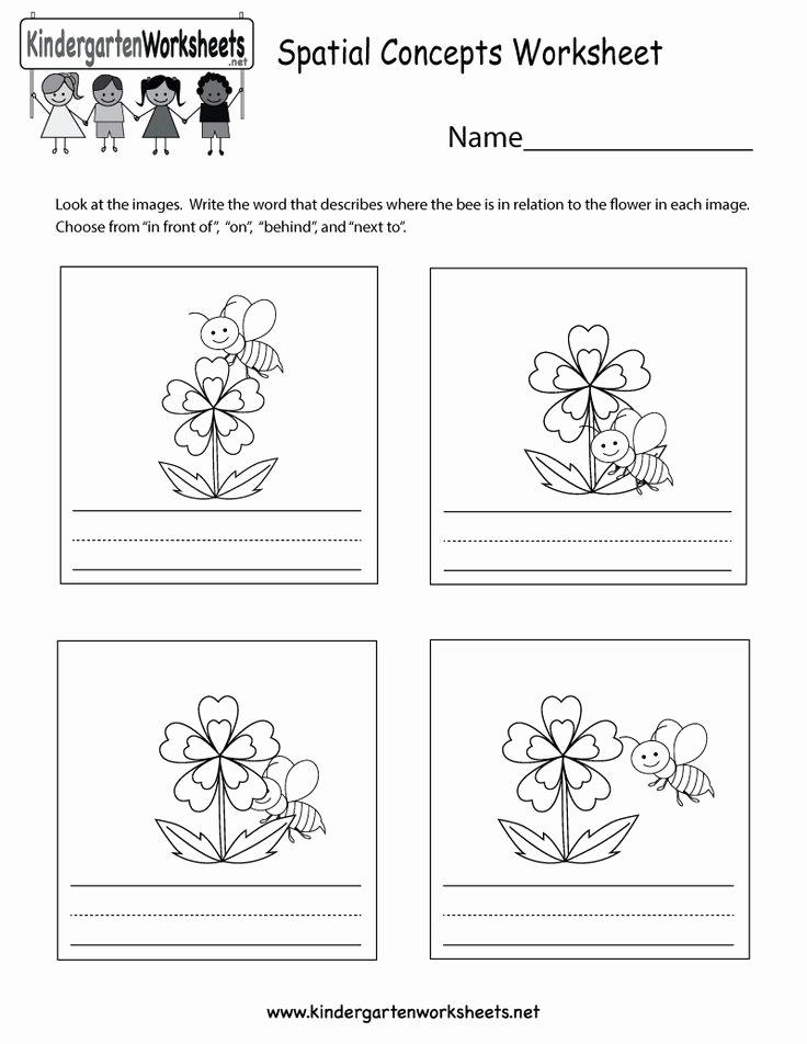 Spatial Concepts Worksheets for Preschoolers top This is A Cute Spatial Concepts Worksheet for