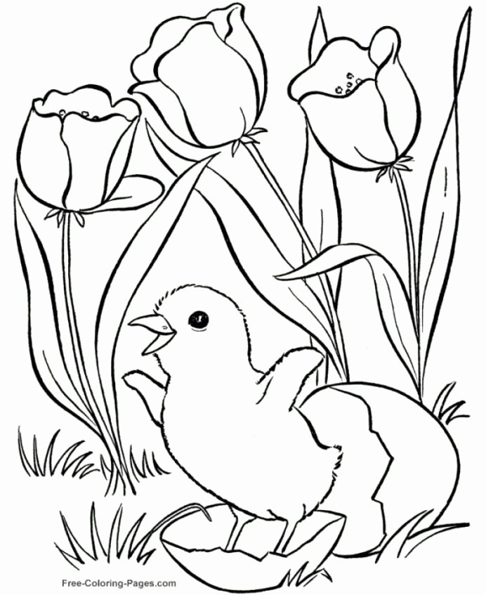 Spring Coloring Worksheets for Preschoolers Fresh Get This Easy Preschool Printable Spring Coloring Qov5f