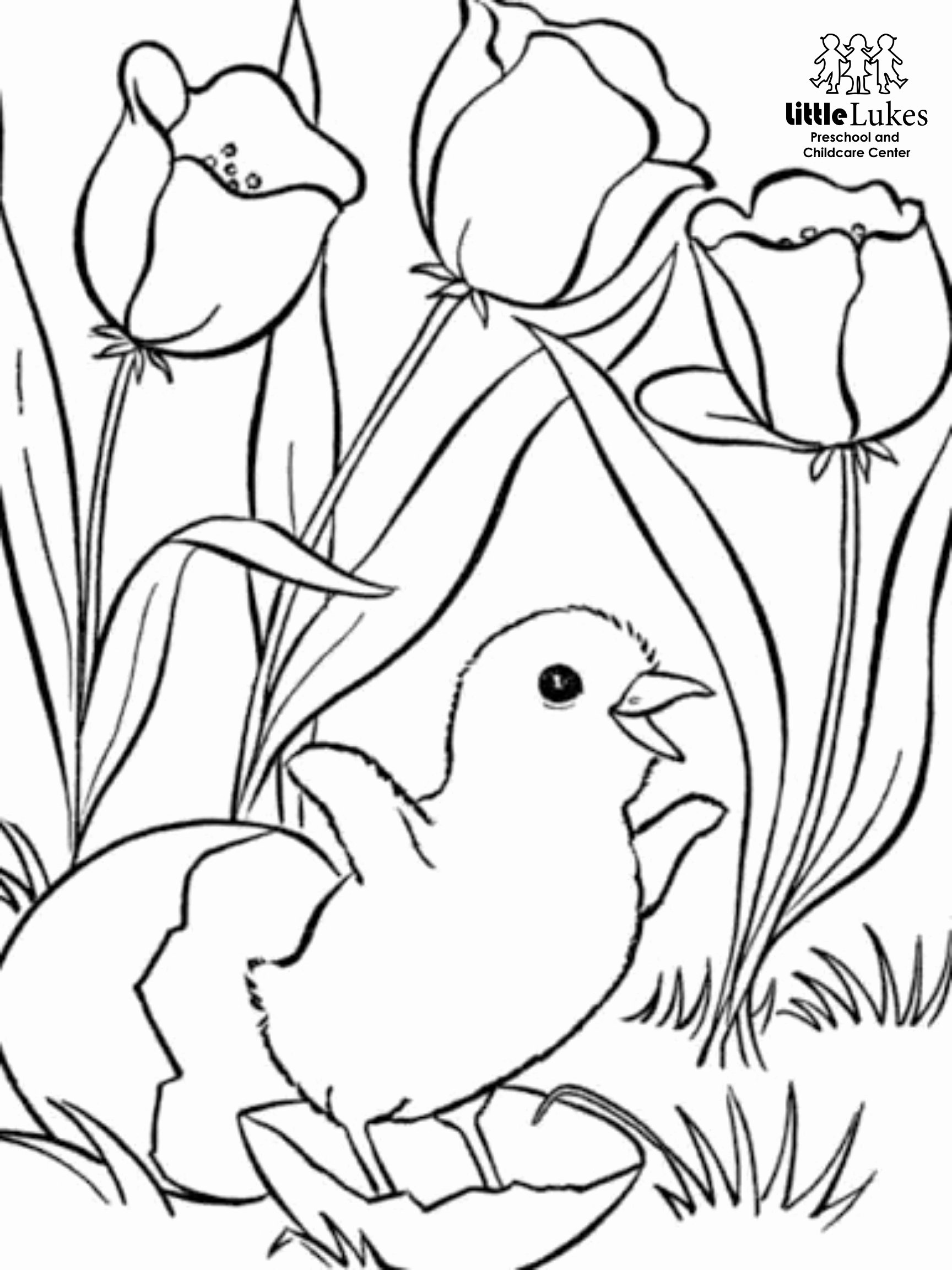 Spring Coloring Worksheets for Preschoolers Unique Free Spring Coloring Pages Little Lukes Preschool and