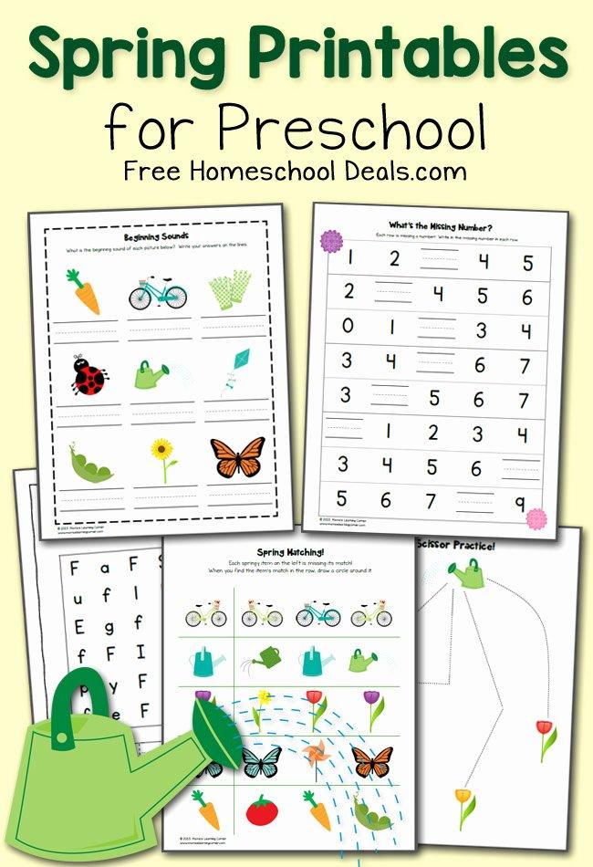 Springtime Worksheets for Preschoolers Best Of Free Spring Printables Pack for Preschool Instant