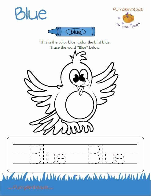 The Color Blue Worksheets for Preschoolers Inspirational the Color Blue Worksheets