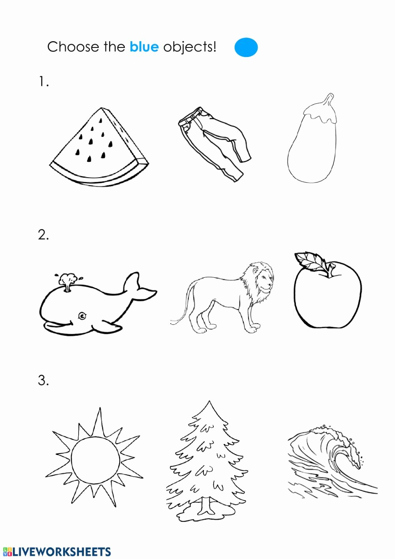 The Color Blue Worksheets for Preschoolers New Blue Color Interactive Worksheet