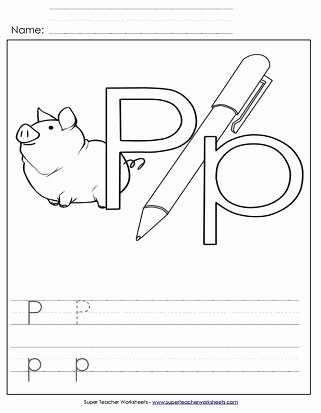 The Letter P Worksheets for Preschoolers Inspirational Letter P Worksheets Recognize Trace & Print